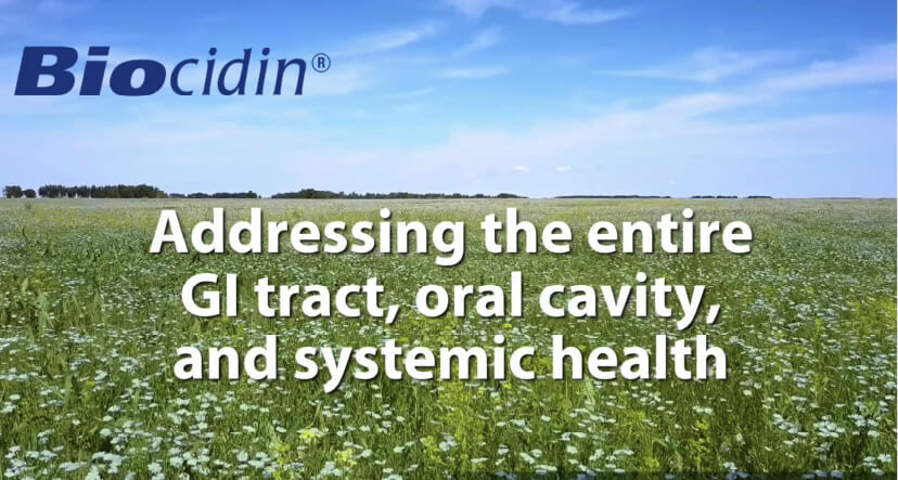 Addressing the entire GI tract, oral cavity, and systemic health